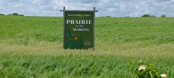 Scotch_Ridge_Prairie